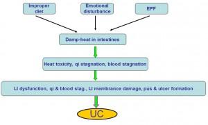 Chinese medicine UC etiology & pathogenesis
